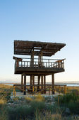 Wildlife observation tower — Stock Photo
