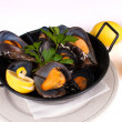 Stock Photo: Steamed mussels