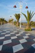 Brach promenade — Stock Photo