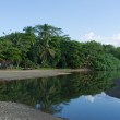 Mouith of a tropical river - Photo