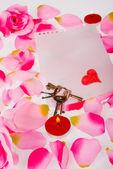 Sevgililer natürmort — Stok fotoğraf
