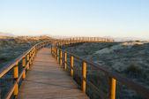 деревянные дорожки — Стоковое фото