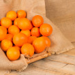 Fresh oranges — Stock Photo #20066911