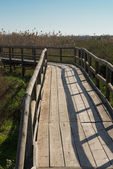 Natural park footbridge — Stock Photo