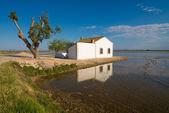 Delta del Ebro — Stock Photo