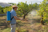 Agricultural worker — Stock Photo