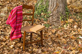 Cozy chair — Stock Photo