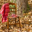 Stock Photo: Fall scene