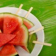 Watermelon lollies — Stock Photo
