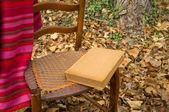 Autumn reading — Stock Photo