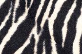 Zebra rug — Stock Photo