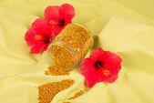 Pyłek — Zdjęcie stockowe