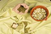 Germinados y habas de la soja — Foto de Stock
