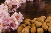 Almond still life — Stock Photo