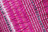 Pleated fabric — Stock Photo