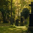 Cemetery — Stock Photo #1861241