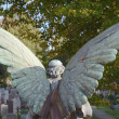 Angel in the Cemetery — Stock Photo
