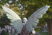 Melek mezarlığı — Stok fotoğraf