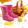 Rain boots, basket with apples and falling leaves - Стоковая фотография