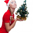 Santa helper with Christmas tree — Stock Photo #1908084