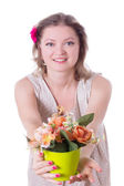 Woman offering flowers in pot — Stock Photo