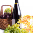 Ripe red and dark grapes and wine in basket — Lizenzfreies Foto