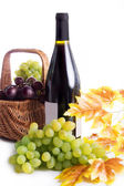 Ripe red and dark grapes and wine in basket — Stock Photo