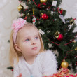 Girl on Christmas — Stock Photo #30789417