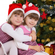 Sisters hugging in sledge under Christmas tree — Stock Photo