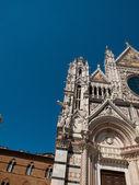 Siena-itália — Fotografia Stock