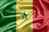 Bandeira do senegal — Fotografia Stock