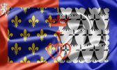 Paga a bandeira de la loire, france — Fotografia Stock