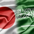 Japan and Saudi Arabia — Foto de Stock