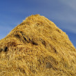 Haystacks - Stock Photo