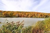 Panoramic landscape with forest lake in autumn — Stock Photo