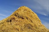 Haystacks — Foto de Stock