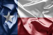 Texas — Stock Photo