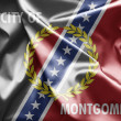 Stock Photo: Flag of Montgomery, Alabama