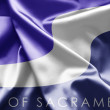 Flag of Sacramento CA — Stock Photo