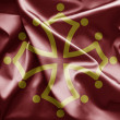 Flag of Midi-Pyrenees - Stock Photo