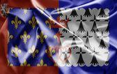 Flaga pays de la loire — Zdjęcie stockowe