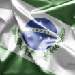 Flag of Parana — Stock Photo