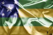 Flag of Sergipe — Photo