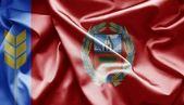 Flag of Altai Krai (Russia) — Stock Photo