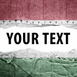 Stock Photo: Hungary flag with text space.