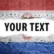 Paraguay flag with text space. — Stock Photo