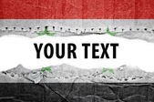 Syria flag with text space. — Stock Photo