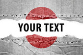 Japan flag with text space. — Stock Photo
