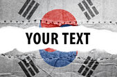 South Korea flag with text space. — Stock Photo