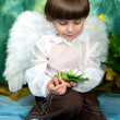 Handsome boy with angel wings — Foto Stock